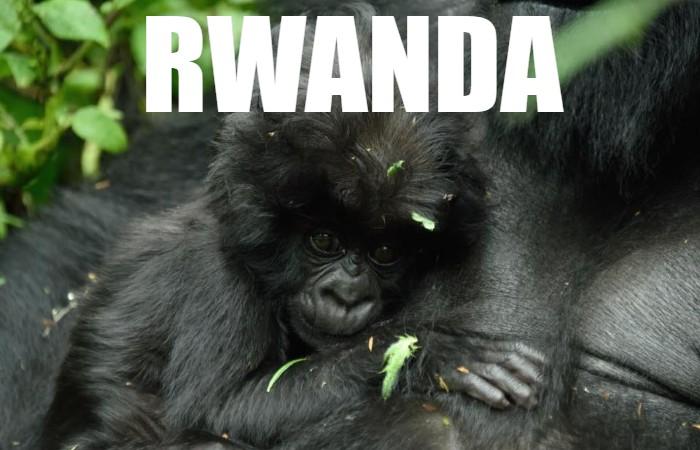 Rwanda Thumbnail