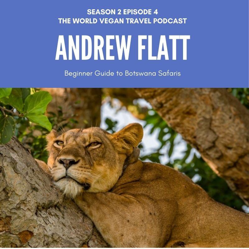 podcast S02E04 Andrew Flatt