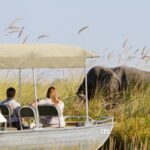 Camp Okavango water safari
