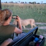 Colleen taking pic of a lion