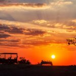 Savute Safari sundowners