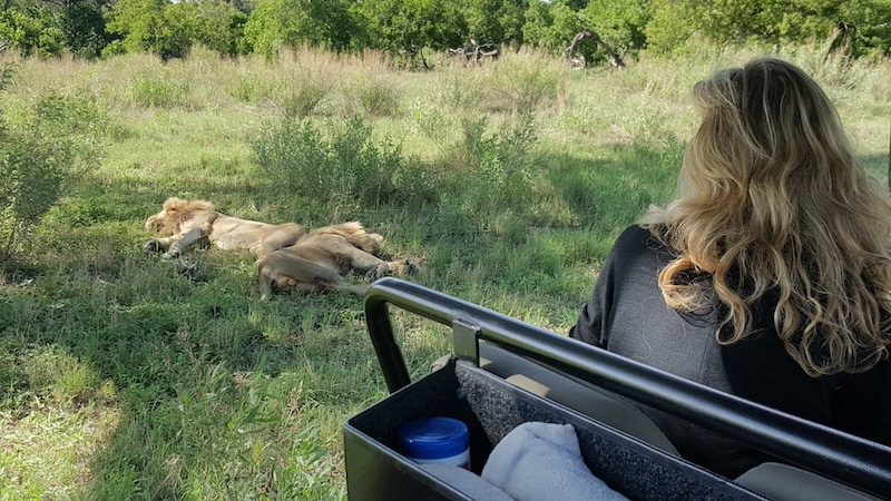 Colleen looking at some sleeping lions