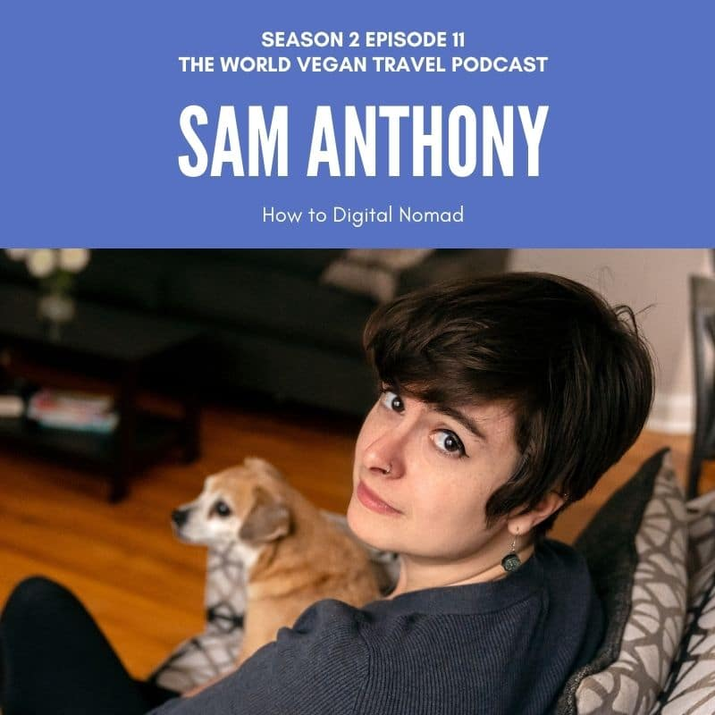 PIcture of Sam sitting on a sofa with a small dog