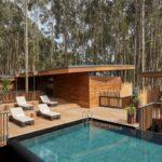 Gorilla Nest pool