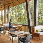 Gorilla's Nest terrace restaurant