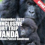 Joyful Luxury Rwanda 2022