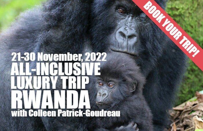 Joyful Rwanda November 2022